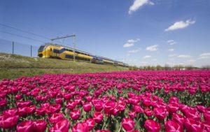 Goedkope treinkaartjes: NS Dagkaart bij Albert Heijn (april 2016)