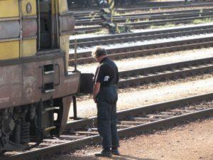 Wildplassen trein blijkt in scene gezet